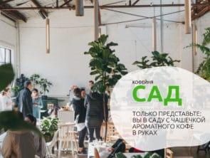 Партнеры Центра «Мастер ОК»: Кофейня-оранжерея «Сад»